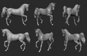 Animal: Horse №5