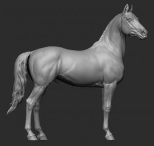 Animal: Horse №13 (75)