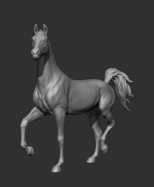 Животные: Лошадь №1