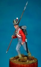 Sergeant of the 33rd regiment of heavy infantry, Great Britain 1815