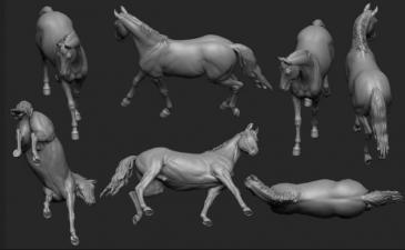 Animal: Horse №21