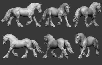Animal: Horse №17