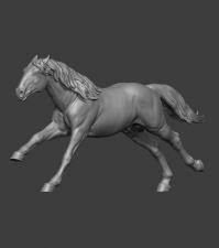 Животные: Лошадь №7