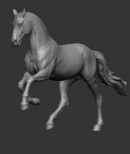 Animal: Horse №8