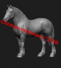 Животные: Лошадь №12