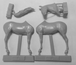 Животные: Лошадь №13