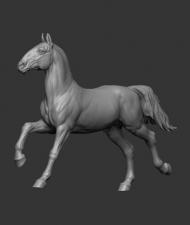 Animal: Horse №6